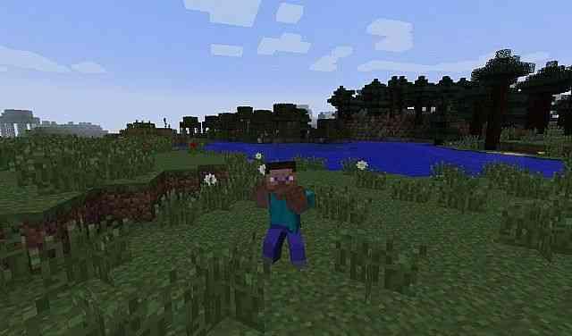 Minecraft 1 8 mo bends