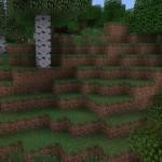 Better Foliage 9