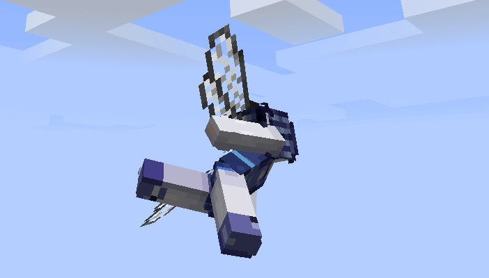 Elytra Dragon Fly Wing