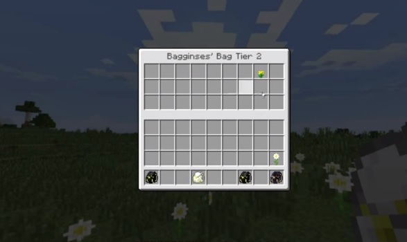 Bagginses Mod for Minecraft 3