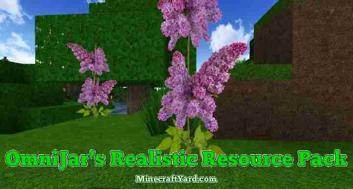 Omnijars Realistic Resource Pack 1.11.1/1.11/1.10.2