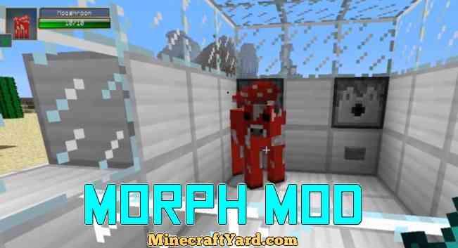 Morph Mod 1.13.1/1.13/1.12.2/1.11.2
