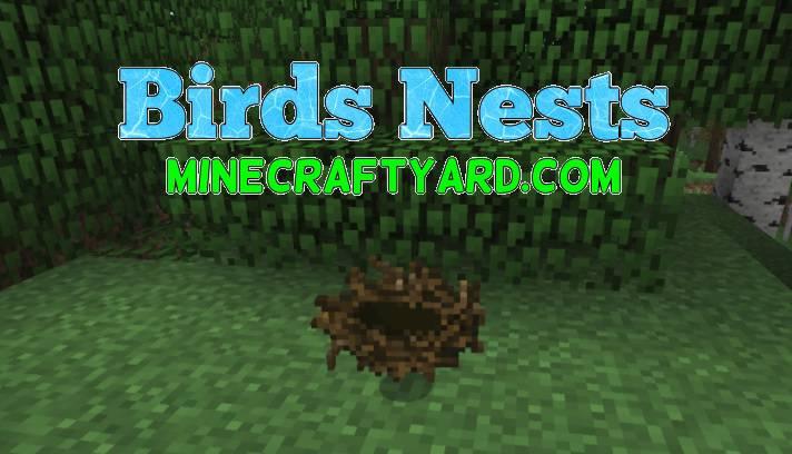 Birds Nests Mod 1.12/1.11.2