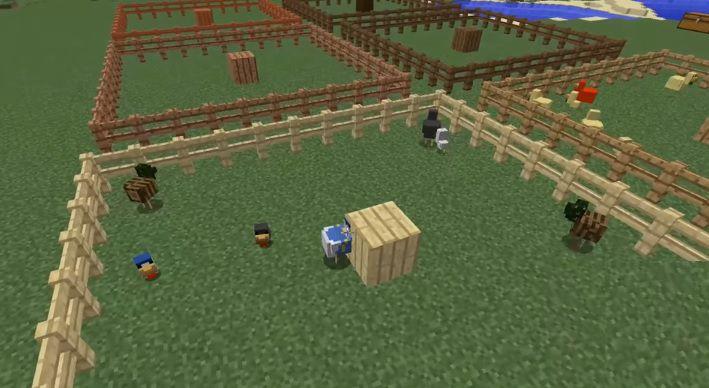 Chickens Mod 2