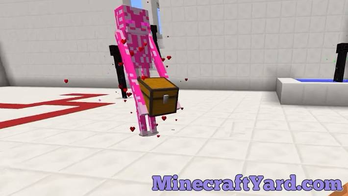 Enderman Evolution 1.11.2