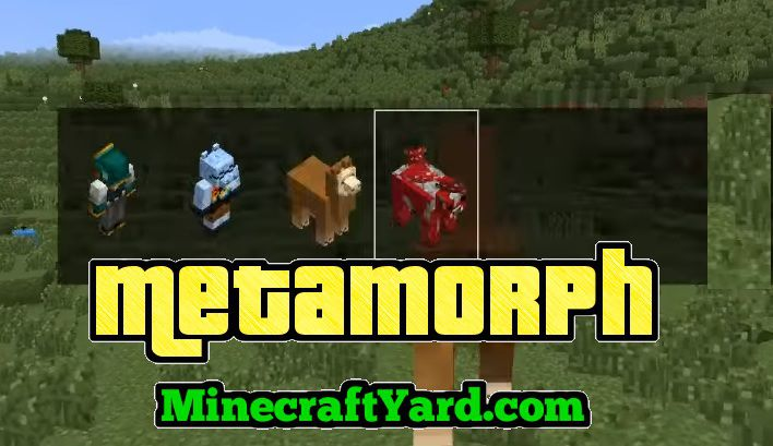 Metamorph Mod 1.14/1.13.2/1.12.2/1.11.2